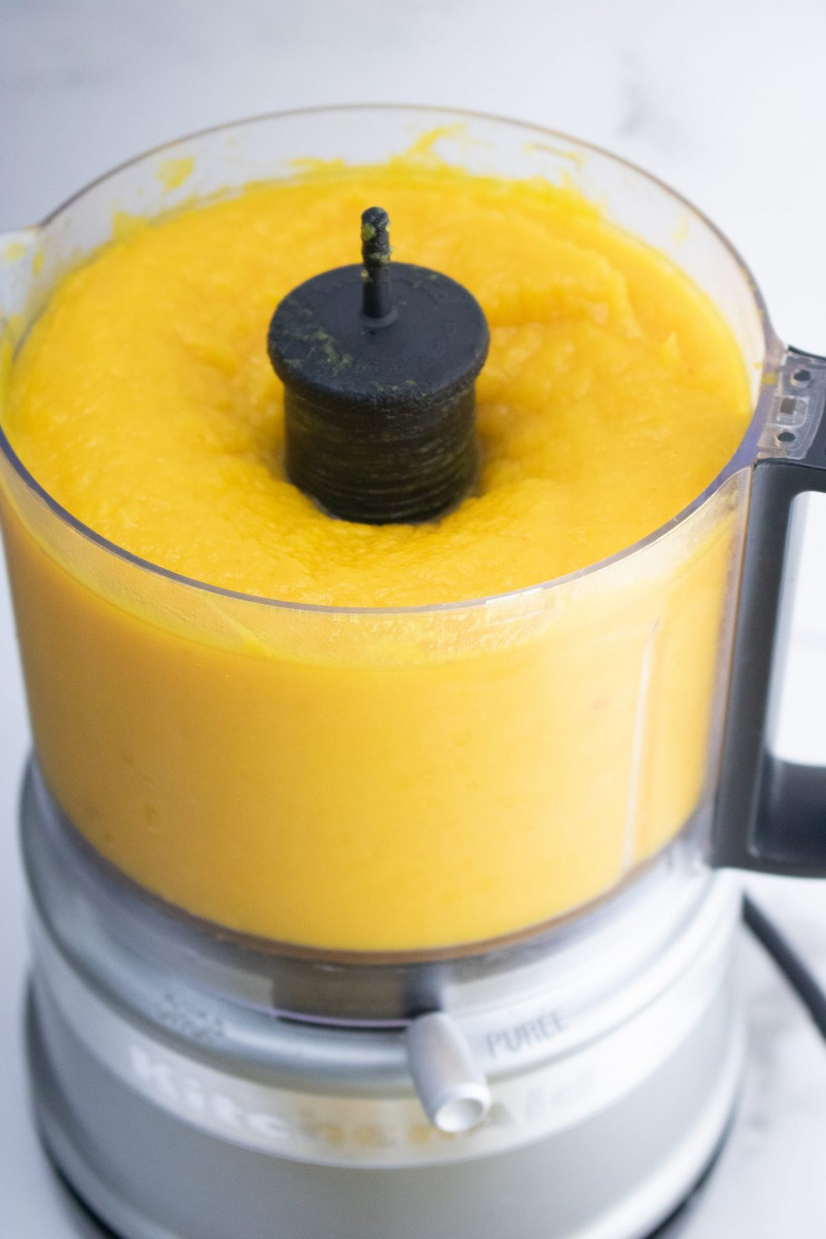 pumpkin puree in food processor